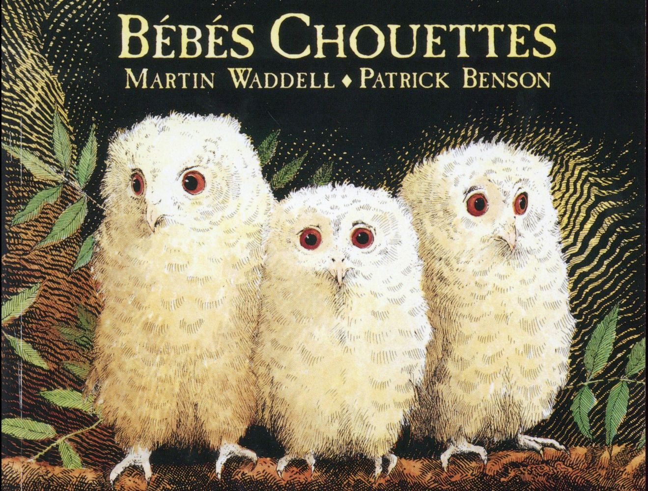 BEBES CHOUETTES BENSON PATRICK EDL
